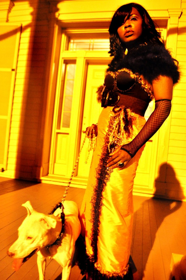 1800s couture at famous clark house Chicago with Dog in Couture Crystal collar and leash!