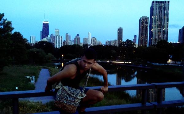 Linclon Park zoo cityscape Chicago
