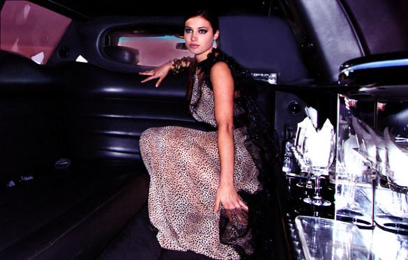 Seri-sheer animal print couture tube dress 2012