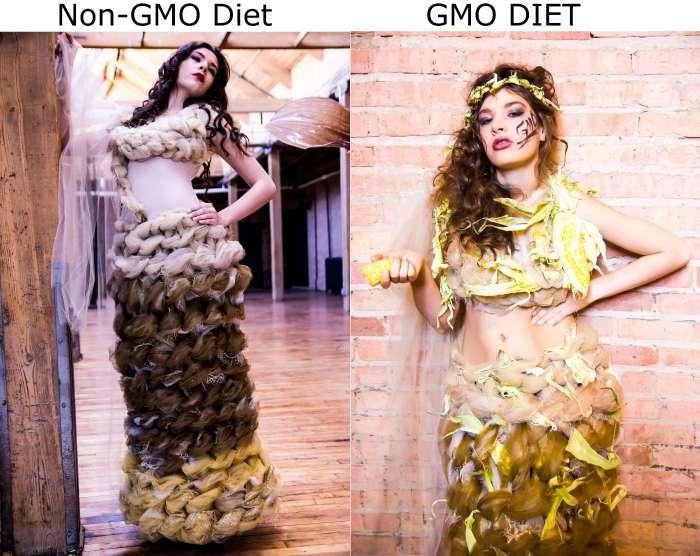 Modello Sam e non-gmo-to-GMO-prima-e-dopo-inflamazione